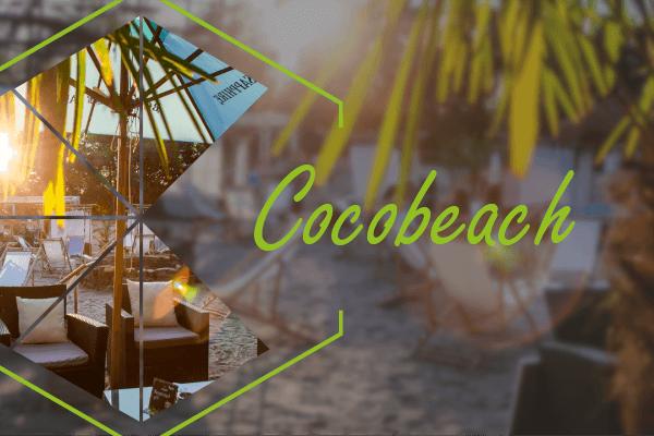 Info Cover Cocobeach