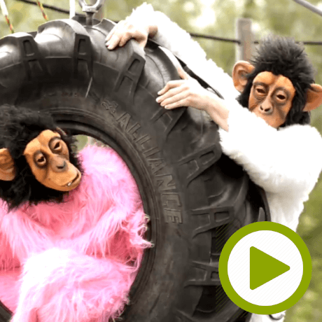monkey_wheel